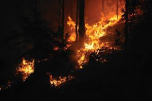 Bushfire blaze