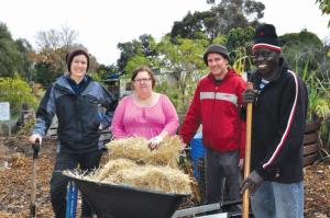 Lockridge locals hard at  work at the Lockridge Community  Garden. L-R: Bonnie Wykman, Sally Stone, Gary McGhee and  Dominic Lobworo Ogids.